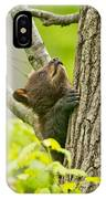 Black Bear Pictures 82 IPhone Case