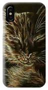 Black Cat Drawing IPhone Case