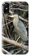 Black Crown Night Heron IPhone Case