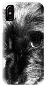 Black Dog Looking At You IPhone Case