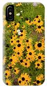 Black Eyed Susans-1 IPhone Case
