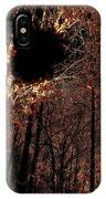 Black Hole Sun IPhone Case