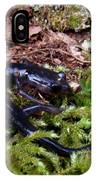Black Salamander IPhone Case