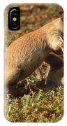 Black-tailed Prairie Dogs Wrestling Around IPhone Case