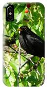 Blackbird In The Cherry Tree IPhone Case