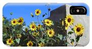 Blackeyed Susans And Adobe IPhone Case