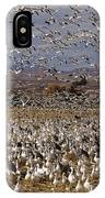 Blast Off Bosque Del Apache IPhone Case