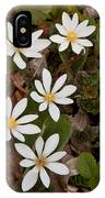 Bloodroot Wildflowers #1203 IPhone Case