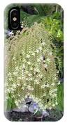 Blooming Succulent Plant. Amazing IPhone Case
