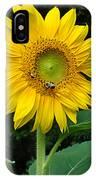 Blooming Sunflower Closeup IPhone Case