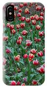 Blooming Tulips IPhone Case