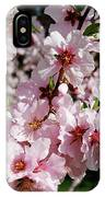 Blossoming Almond Branch IPhone Case