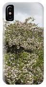 Blossoming Tree IPhone Case