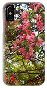Blossoms In The Shanendoahs IPhone Case