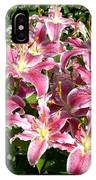 Blossoms Of Chase Lane IPhone Case