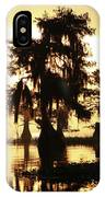 Blue Cypress Yellow Light IPhone Case