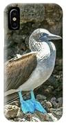 Blue Footed Boobie IPhone Case