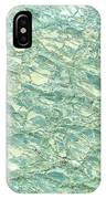 Blue Fossil IPhone Case