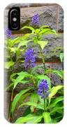 Blue Ginger At The Wall IPhone Case