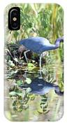 Blue Heron Fishing In A Pond In Bright Daylight IPhone Case