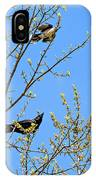 Blue Jay Mobbing A Crow IPhone Case