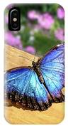 Blue Morpho Butterfly On A Wooden Board IPhone Case