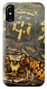 Blue Ridge Box Turtle IPhone Case