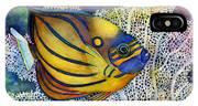 Blue Ring Angelfish IPhone Case