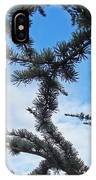 Blue Sky Art Prints White Clouds Conifer Pine Branches Baslee Troutman IPhone Case