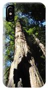 Blue Sky Big Redwood Trees Forest Art Prints Baslee Troutman IPhone Case