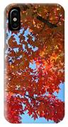 Blue Sky Red Autumn Leaves Sunlit Orange Baslee Troutman  IPhone Case