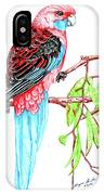 Blue Tail Parrot - Green Day IPhone Case