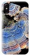 Blue Turkeytail Fungi IPhone Case