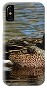 Blue Winged Teal Pair IPhone Case