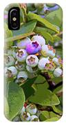 Blueberries On The Vine 7 IPhone Case