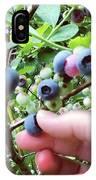 Blueberry Bush IPhone Case