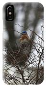 Bluebird In Briars IPhone Case