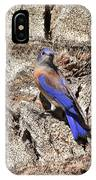 Bluebird On Canary Island Palm II IPhone Case