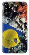 Bluecheek Butterflyfish IPhone Case
