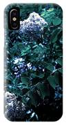 Blues And Greens IPhone Case