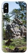 Bluff Lake Ca Boulders 1 IPhone Case