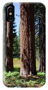 Bluff Lake Forest 3 IPhone Case