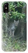 Bobcat In The Everglades IPhone Case
