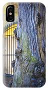 Boboli Garden Ancient Tree IPhone Case