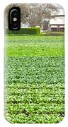 Bok Choy Field And Farm IPhone Case