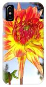 Bold And Beautiful IPhone Case