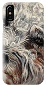 Bolognese Breed IPhone Case