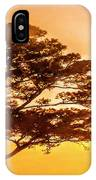 Bonsai Pine Sunrise IPhone Case