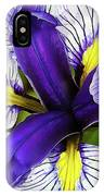 Boothbay Beauty IPhone Case