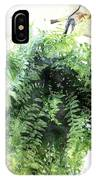 Boston Fern With Visitor IPhone Case